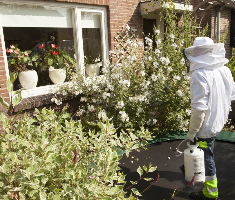 pest control going on in garden in the Netherlands